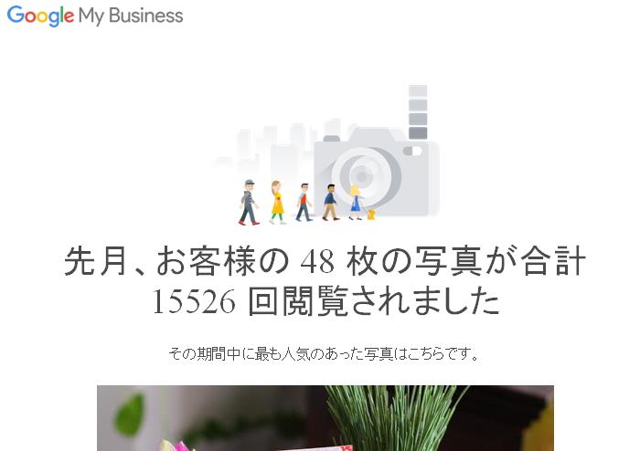 年末12月の閲覧数【花屋のグーグルマイビジネス】